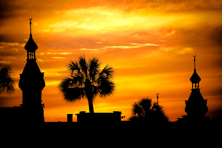 College Of New Rochelle >> The University of Tampa ( into the night) » Your Campus Image